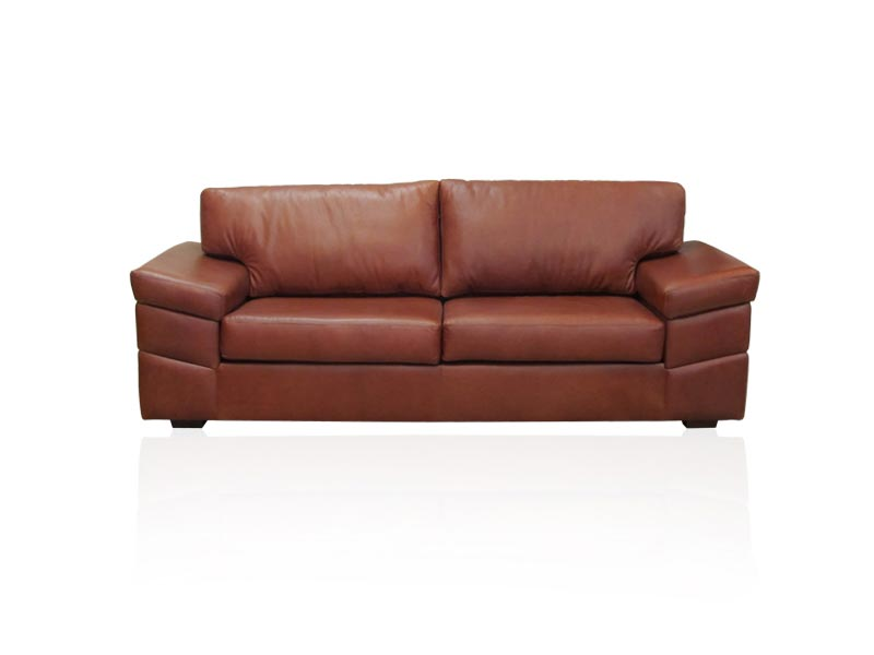 Havana Leather Couch
